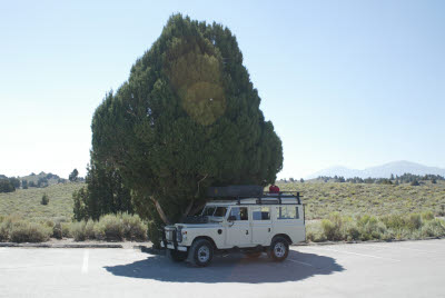 Land Rover rests in the shade