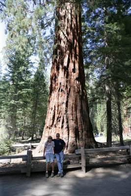 K.C. and Alex by a Giant Sequoia