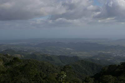 Maricao Forest Reserve