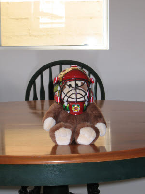 Monkey in a Hockey Mask