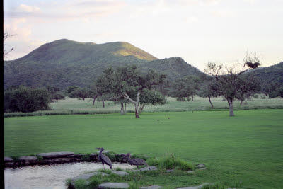 Lawn at Okapuka Ranch Lodge