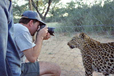Sean photographs leopard throught the fence