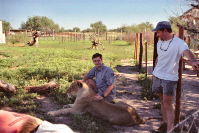 Mark pets a Lioness at Harnas