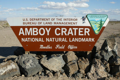 Anteater on the Amboy Crater Sign